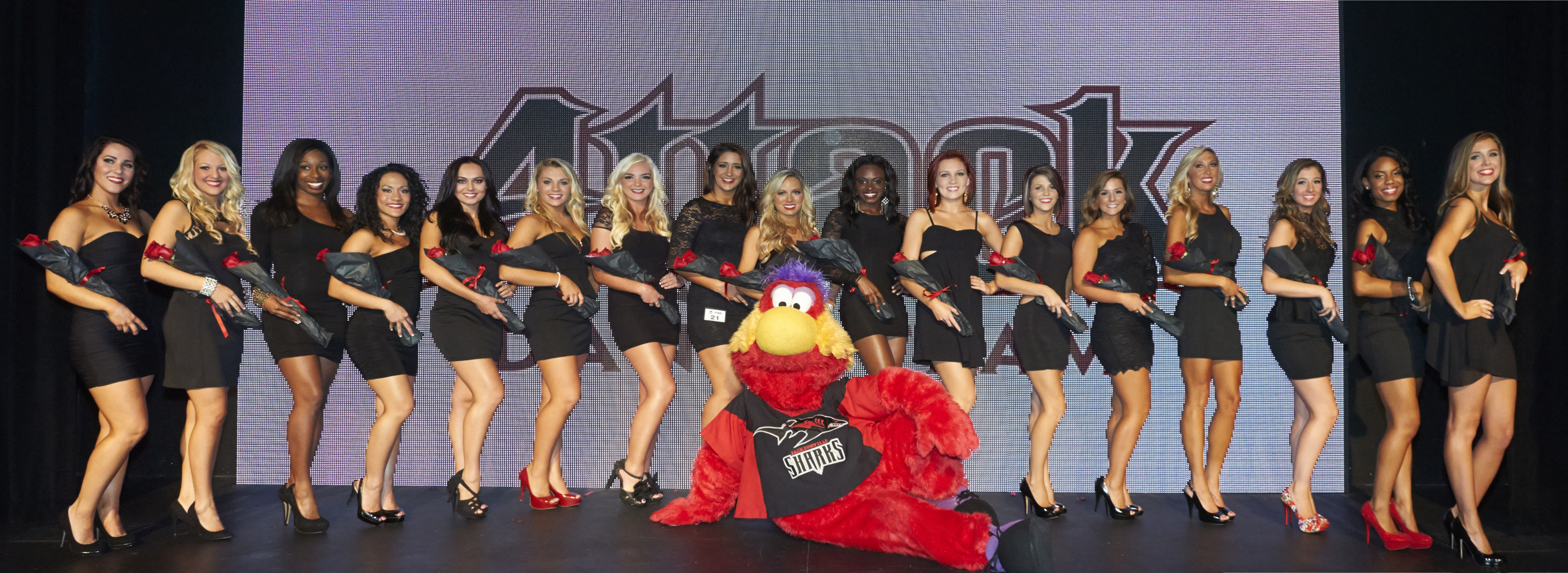 2013-2014AttackDanceTeam.jpg