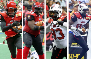 All arena football team names