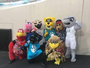 <p> August 10th, 2018, Jags Preseason Opener - Chum joins Pro &amp; College Mascots at Jags Preseason Opener</p>