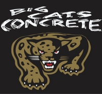 Big Cats Logo.jpg
